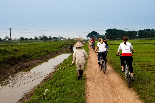 Hanoi Biking Plus Food Tour