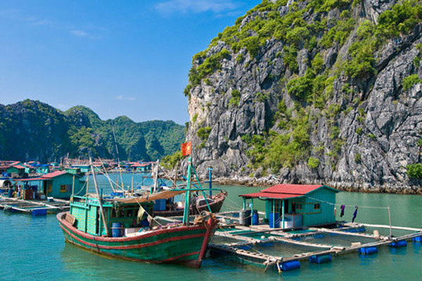 Hanoi Day Tour Halong Bay