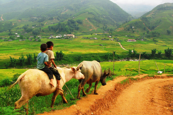 North Vietnam Tour 7 Days