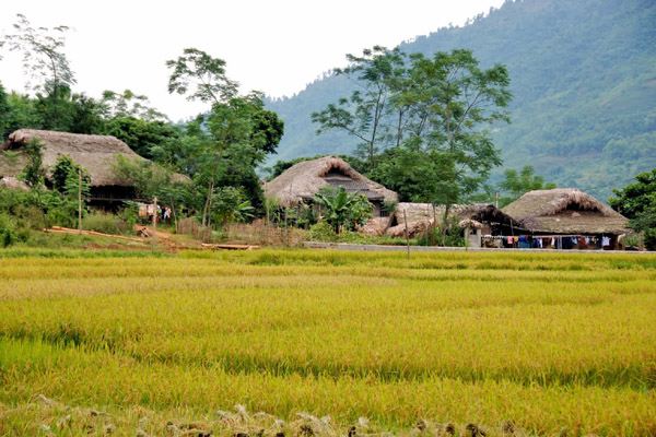 Vietnam Tour Ha Giang 4 Days