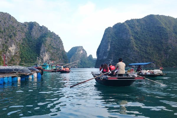 Halong Bay  Days  Night Tour Travel Blog