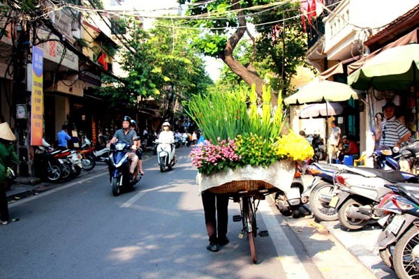 Vietnam Must See Package 8 Days (1)